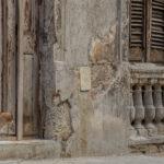 Old Houses in Havana